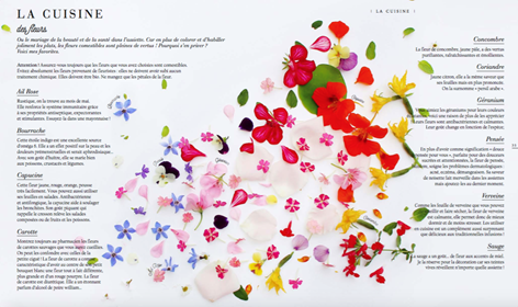 fleurs comestibles ros e de la reine. Black Bedroom Furniture Sets. Home Design Ideas